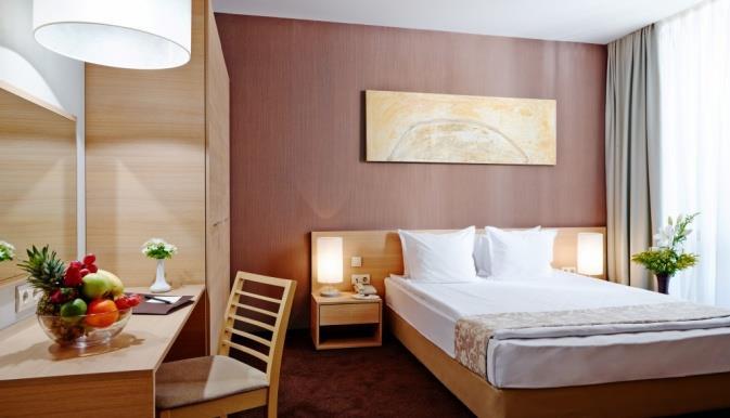 lucky-bansko-spa-relax-aparthotel-oda-006